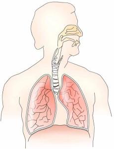 Atemwegsinfekte sind unangenehm, doch meist harmlos